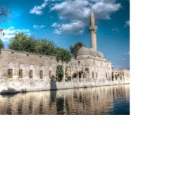 Halil Ul Rahman Mosque User Photo
