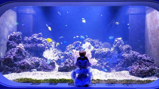 Penghu Aquarium