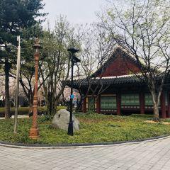 경상감영공원 여행 사진