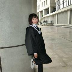 위안지 대학 여행 사진