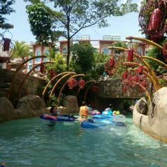 Adventure Cove Waterpark User Photo