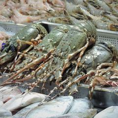 Seafood Market User Photo