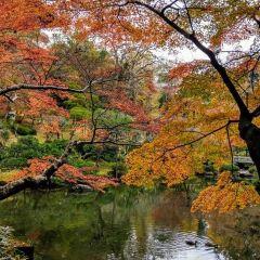 Naritasan Park User Photo