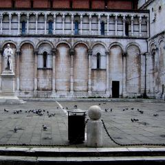 Chiesa di San Michele in Foro User Photo