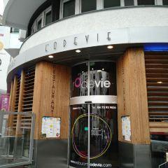 L'Odevie用戶圖片