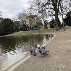 Stadtpark User Photo