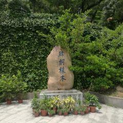 Hanci Xiangmu User Photo