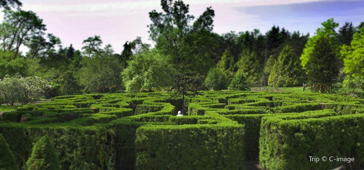 VanDusen Botanical Garden2