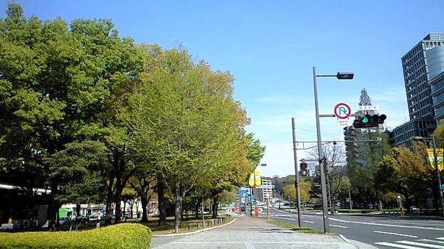 Peace Boulevard3