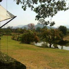 Khao Yai National Park User Photo