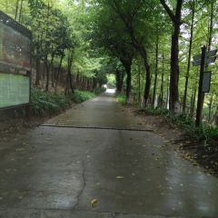 Yuping Park User Photo