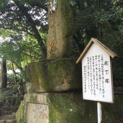 稚加榮(福岡店)用戶圖片