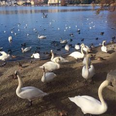 Lake Zurich, Eastern Bank用戶圖片