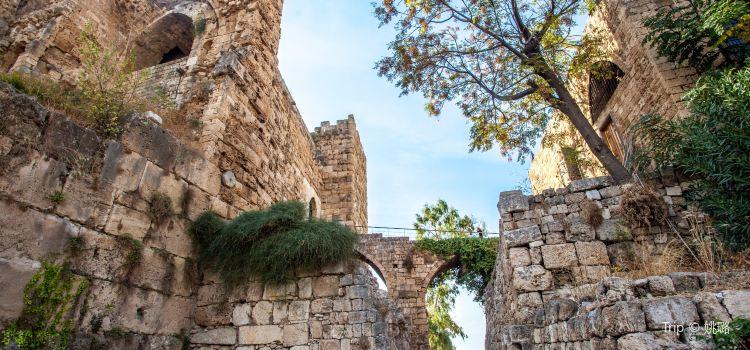The Crusader Castle1