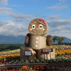 Kanno Farm User Photo