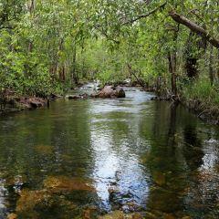Litchfield National Park User Photo
