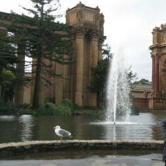 舊金山藝術宮用戶圖片