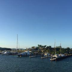 Abell Point Marina用戶圖片