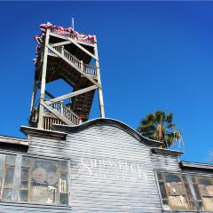 Observation Tower User Photo