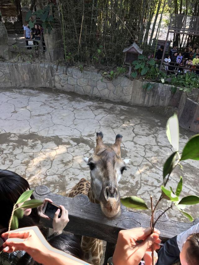 Chuanlord Tourism & Leisure Expo Garden