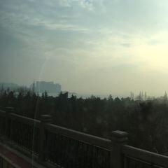 전당강대교 여행 사진