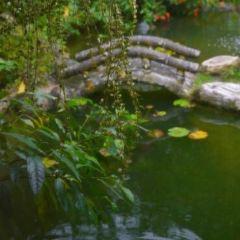 瑞穗溫泉用戶圖片