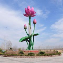 Weishanhu Wetland Park User Photo