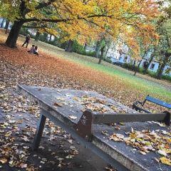 環城公園用戶圖片