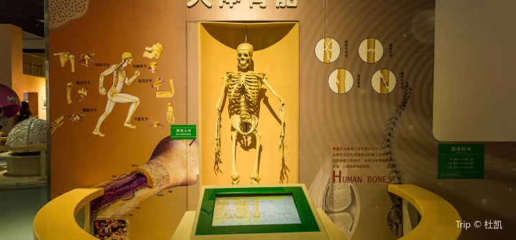 Tianjin Science and Technology Museum3