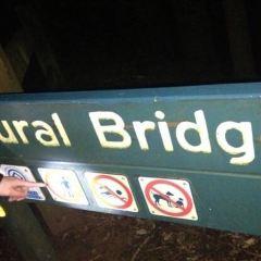Natural Bridge (Springbrook National Park) User Photo