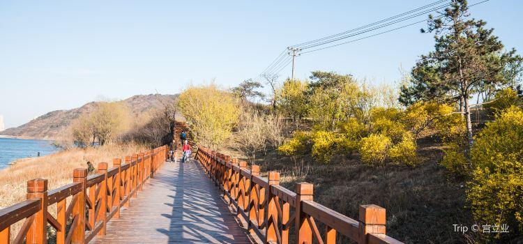 서교국가산림공원1