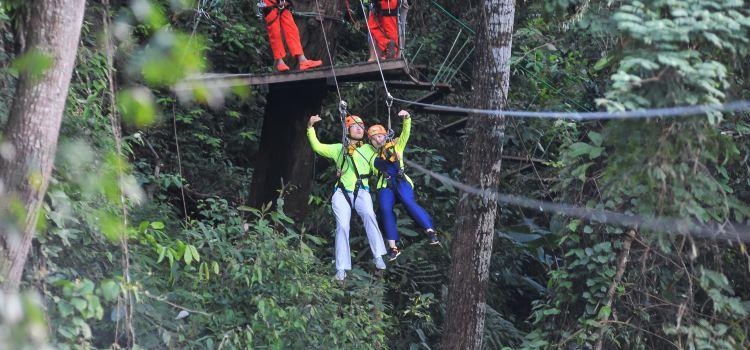 Sky Line Adventure Jungle Leap1