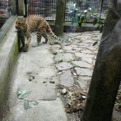 항저우 동물원(항주 동물원) 여행 사진