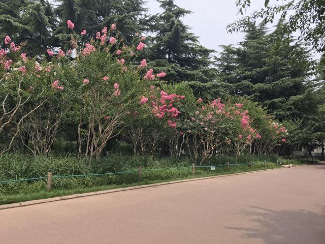 Baihua Park