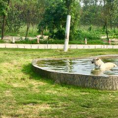 Beidaihe Ziran Ecology Park User Photo