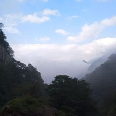 태평국가삼림공원 여행 사진