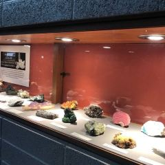 Earth Sciences Museum User Photo