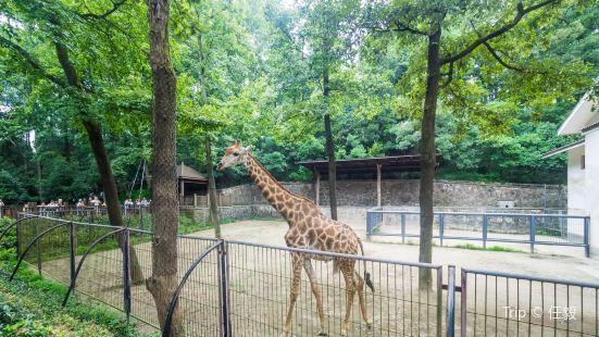 杭州動物園
