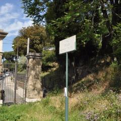 Fondazione Giorgio e Isa de Chirico User Photo