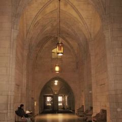 匹茲堡大學用戶圖片