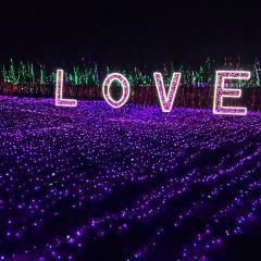 Suzhou Taihu Horticultural Expo Park User Photo