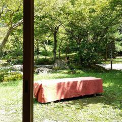 高臺寺茶道與坐禪體驗用戶圖片