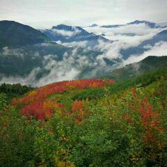 홍협곡 여행 사진