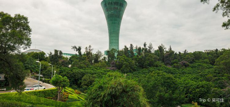 해상명주관광탑