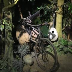 꽌스 사원 여행 사진
