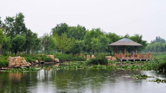 Longkou Park