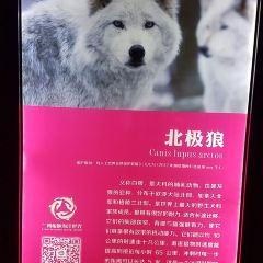란저우 오션 월드 여행 사진