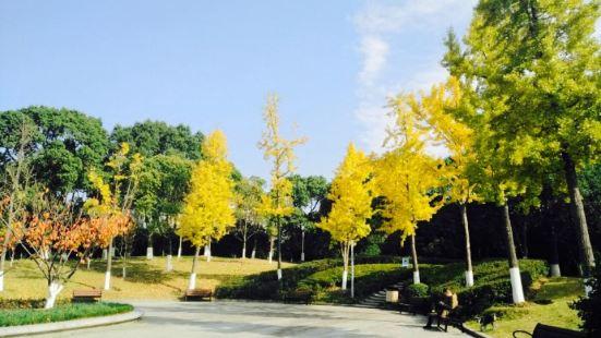 Zhongtang Park