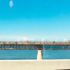 Seven Mile Bridge User Photo