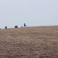 비간묘  여행 사진